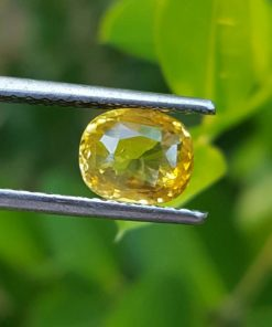 Cushion cut yellow sapphire _Sumuduni gems