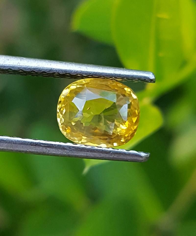 Cushion cut yellow sapphire _Sumuduni gems